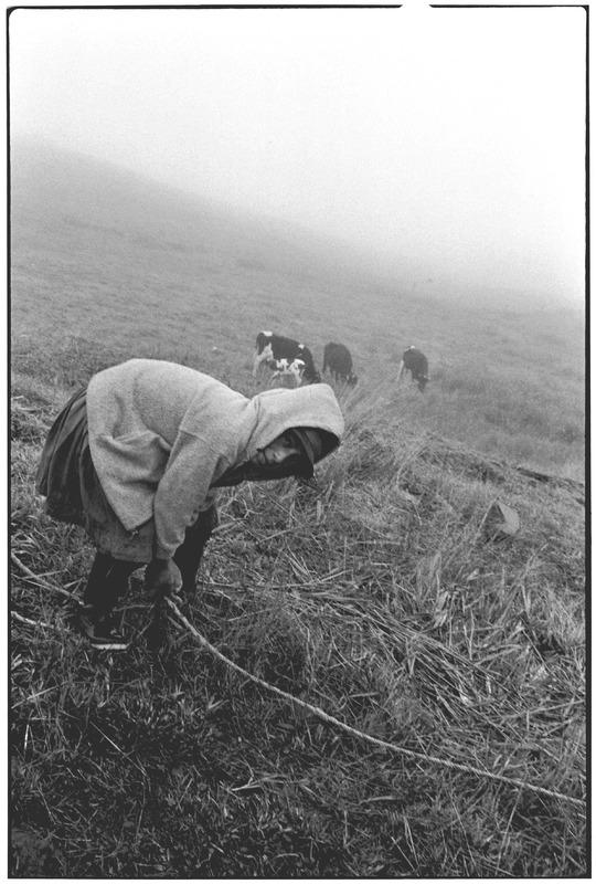 Field Worker in Ecuador