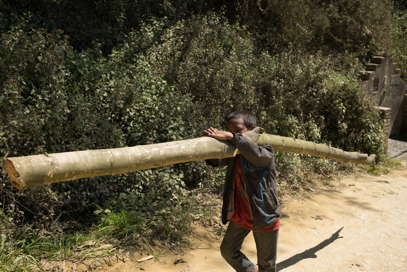Boy Carrying a Log in Kathmandu, Nepal