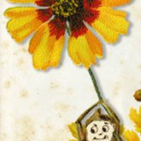 http://gallery.lib.umn.edu/archive/original/brownie-right-2_d695395d2f.jpg